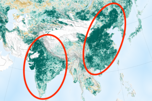 NASA Says Earth Is Greener Today Than 20 Years Ago Thanks To China, India