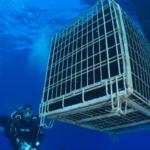 Piero Lugano, spumante sottomarino in banca  sotto il mare .