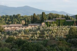12 Best Wine Tours and Tastings in Florence