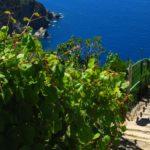 Hotel Florenz: il polo del trekking di Finale Ligure